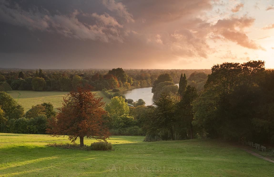Richmond hill autumn print.