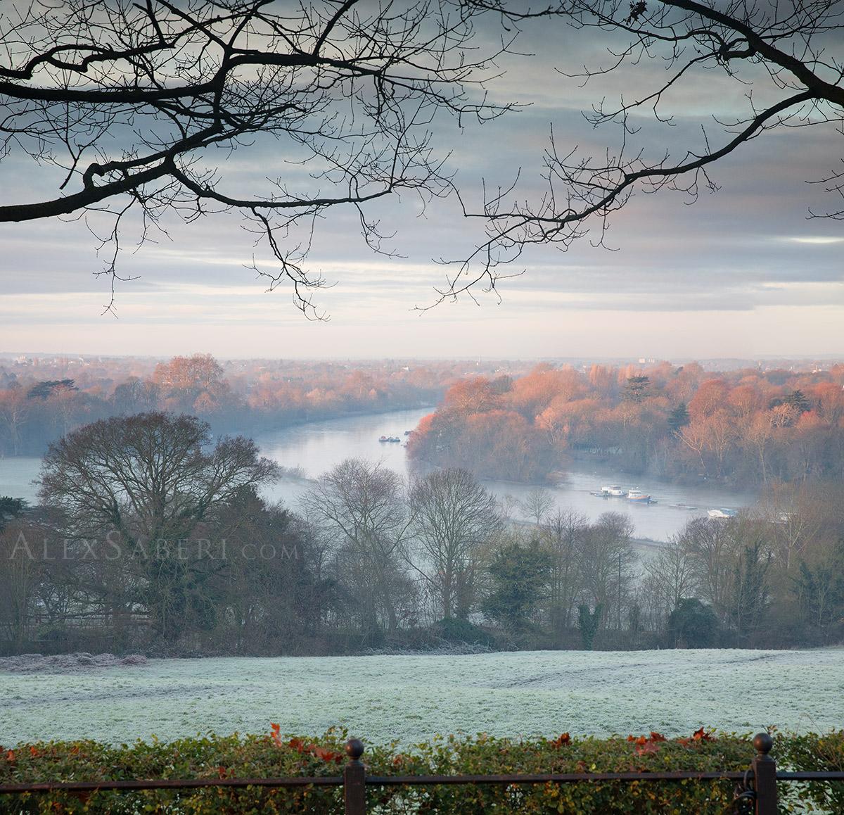 Richmond park winter sunrise photo print