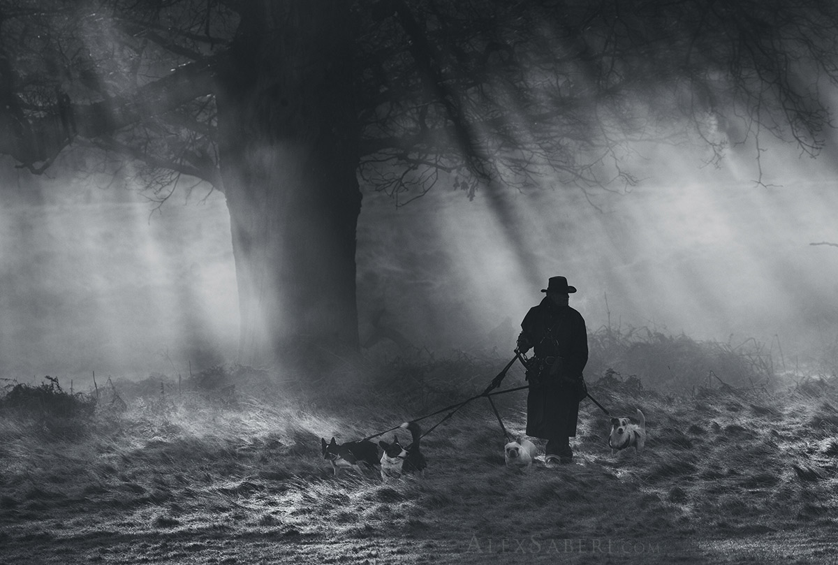 The Dog Walker print by Alex Saberi